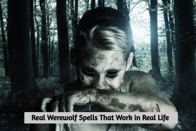 Real Werewolf Spells That Work in Real Life | Voodoo and Magic